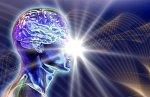 Человек – это единая система, а не биохимическая лаборатория